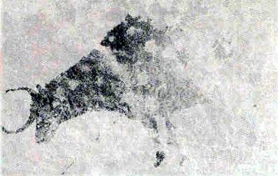 tormon-toro-cerrad-tiojorge