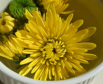 health benefits, dandelion benefits, dandelion health benefits, dandelion nutrition facts, dandelion uses,