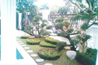 Galeri Taman - Tukang Taman Surabaya 87