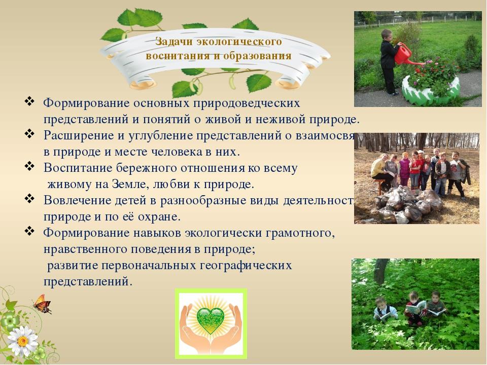 Доклад экологическое воспитание младших дошкольников 3580