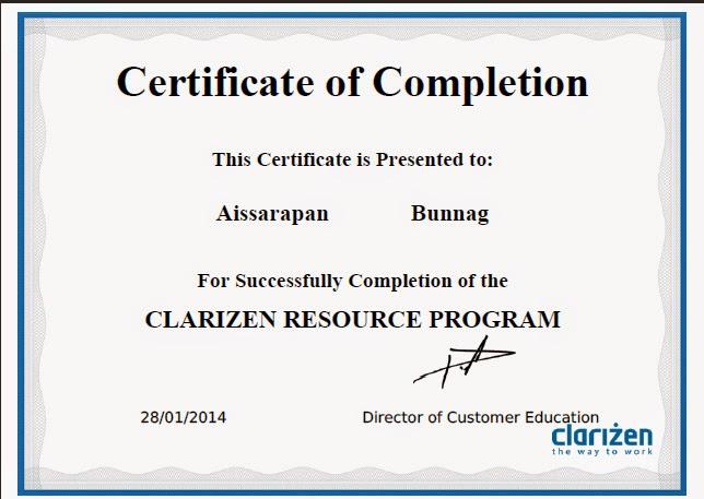 Certificate Clarizen Project Management Resource Program