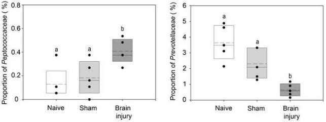 図:脳卒中で腸内細菌変化