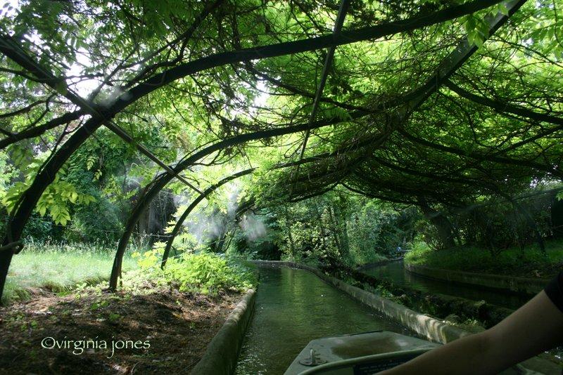 Paris through my lens jardin d 39 acclimatation - Jardin d acclimatation a paris ...