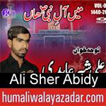 https://www.humaliwalyazadar.com/2018/09/ali-sher-abidy-noha-2019.html