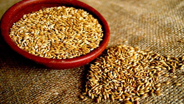 El pánico que esta causando esta maravillosa semilla a los doctores es asombroso, adelgaza y cura la diabetes