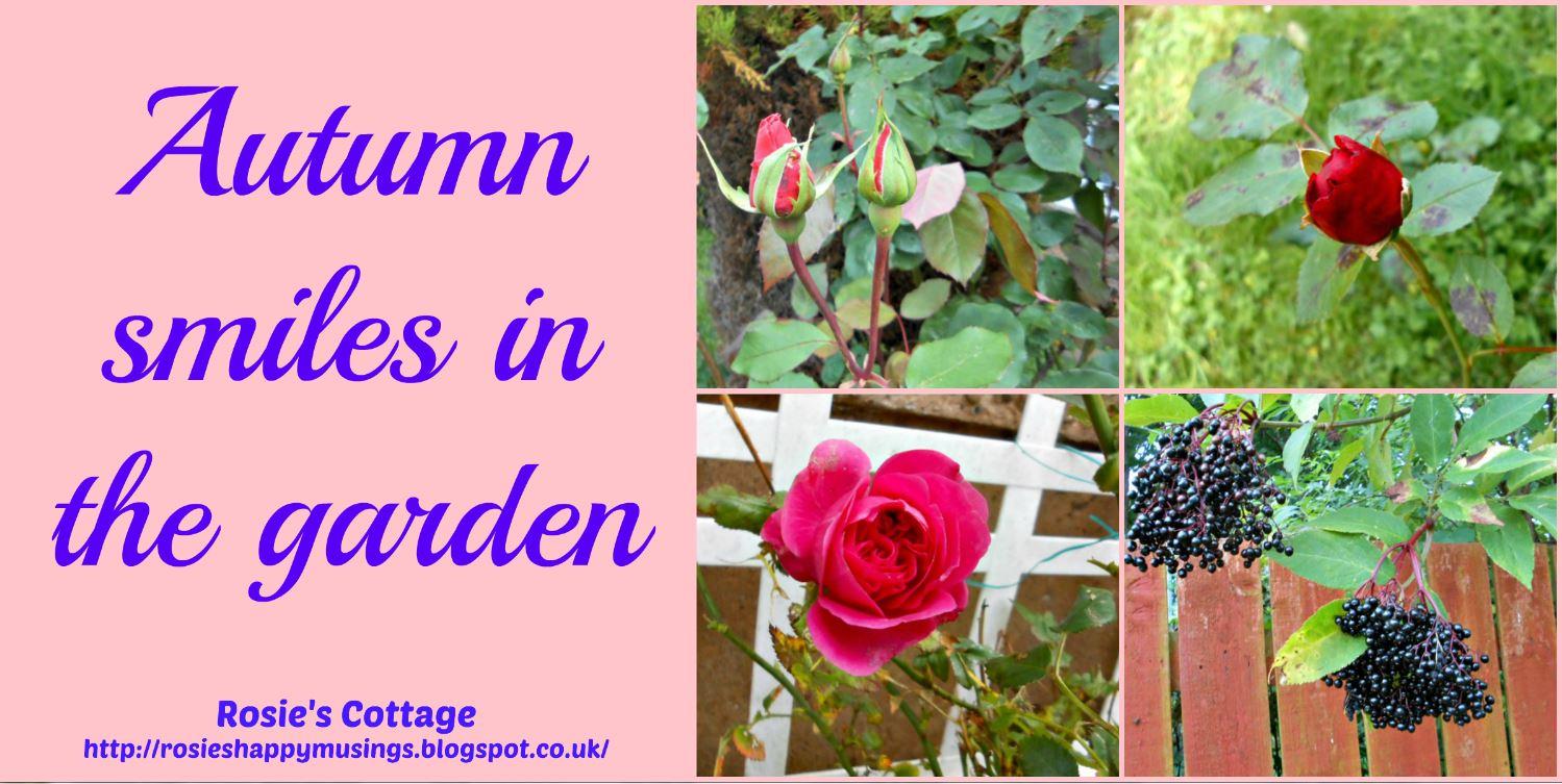 Rosie S Cottage Autumn Smiles In The Garden
