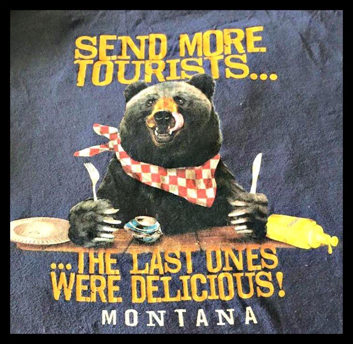 Tourists and bears in Montana are an interesting combination