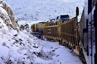 Tren Patagónico con pasaje completo para próximas salidas
