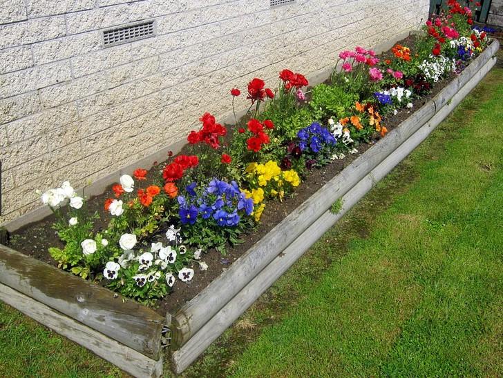 flower gardening basics - Garden Design Basics