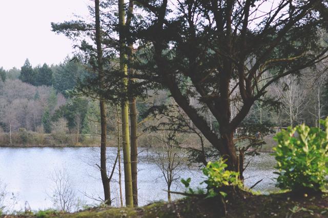 CenterParcs Longleat Lake