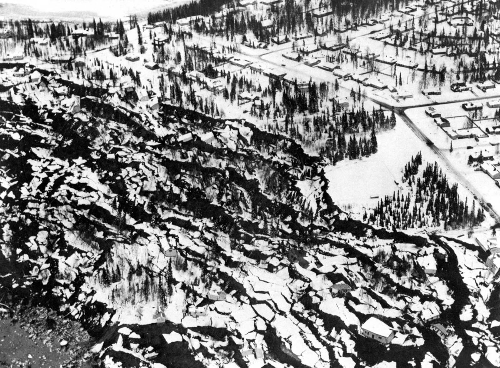 An Anchorage neighborhood name Turnagain Heights was partially destroyed by a landslide shortly after the earthquake.