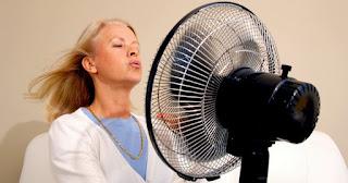 Remèdes pour soulager les bouffées de chaleur