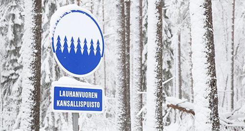 Luminen taikametsä kansallispuistossa
