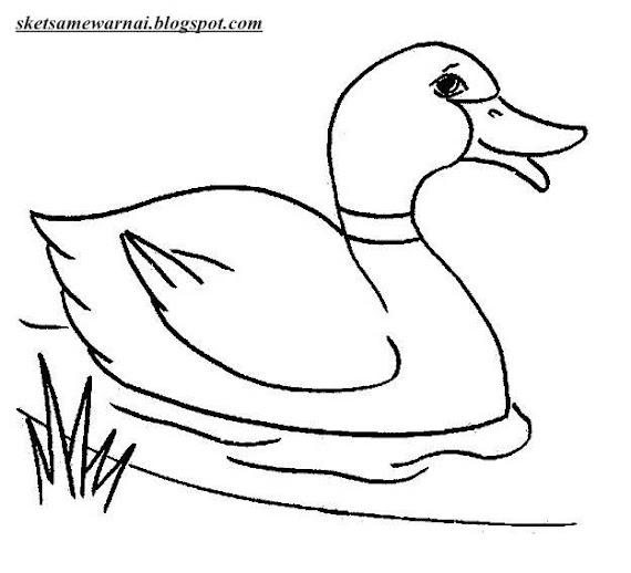 Download Mewarnai Gambar Pelampung Bebek