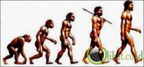 Perubahan karena Evolusi