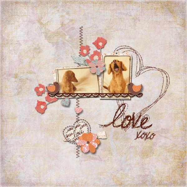 DSB  Love