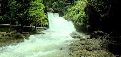 Bantimurung Bulusaraung National Park, The Land Of Butterflies, butterfly, natural butterfly, butterfly park, fun vacation. international trip, Indonesia trip