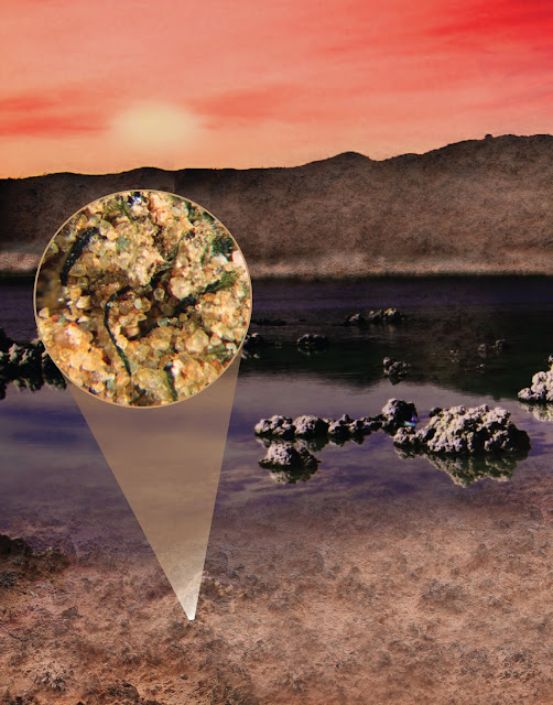 Continental microbes helped seed ancient seas with nitrogen