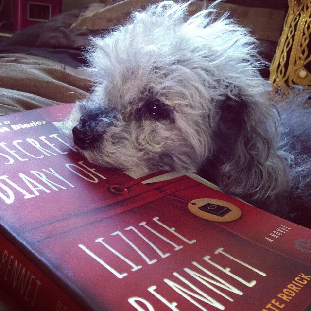 Murchie rests his chin atop a trade paperback copy of The Secret Diary of Lizzie Bennet. The red cover is styled like a tie-closed moleskin notebook, with the title printed on it in white.