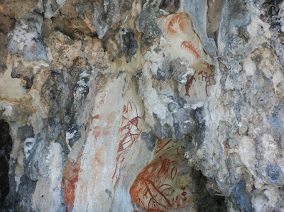 Nigel Foster, Pictographs Misool date back 2-5,000 years