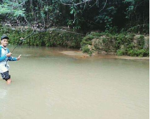 Spot Hampala di Jogja palung sungai progo oyo gunungkidul bantul kulon progo sleman