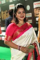 Radhika Sarathkumar (7).JPG
