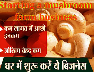 mushroom farming business in hindi language