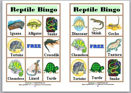 Examples of reptiles for kids.
