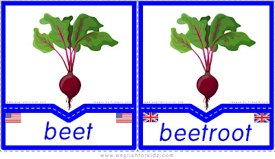 Beet and beetroot - English flashcards for the fruits and vegetables topic, British English vs. American English