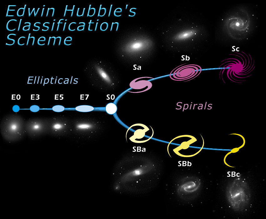 CANDELS: What types of galaxies are there?