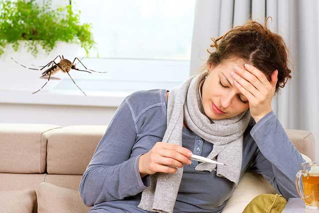 Penyakit Demam Berdarah dan Pencegahannya