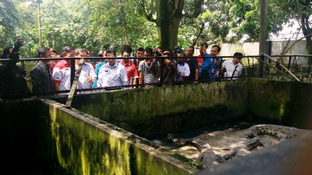 Mimpi Buwas Disetujui Jokowi, Indonesia Segera Miliki Pulau Napi Narkoba Dikelilingi Buaya