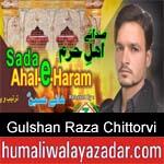 https://www.humaliwalyazadar.com/2018/10/gulshan-raza-chittorvi-nohay-2019.html