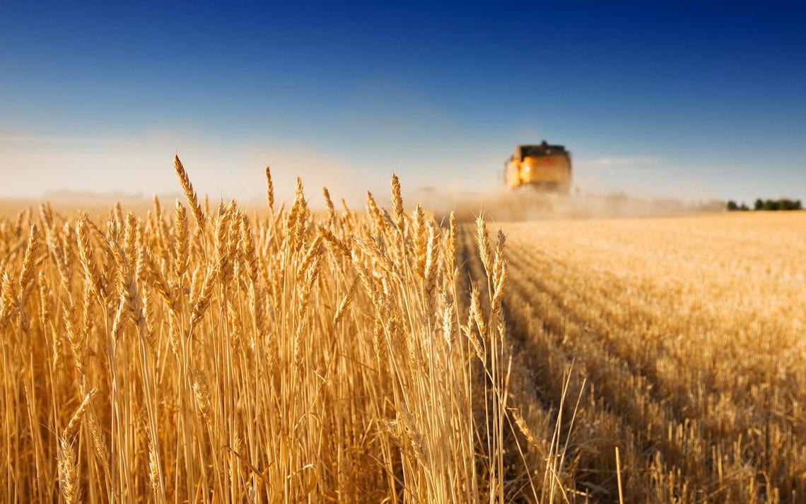 Обновления Agrarian Benefit