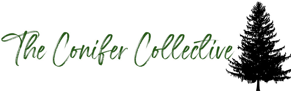 The Conifer Collective