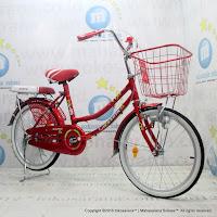 City Bike Exotic ET-9788 20 Inci