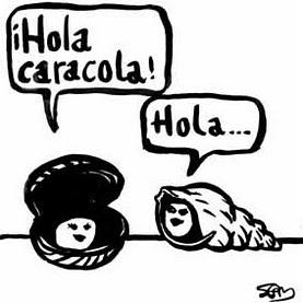 böja spanska verb tener