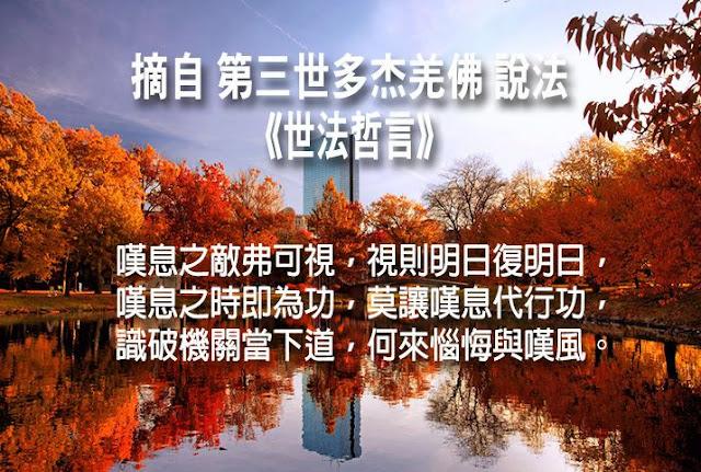 第三世多杰羌佛說《世法哲言》(二十九)
