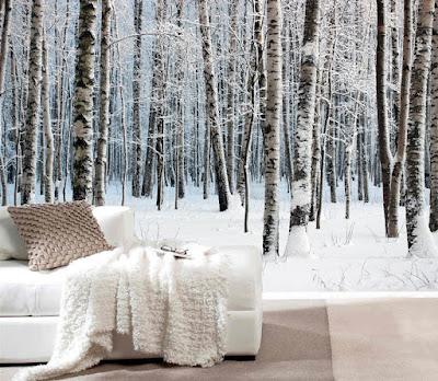 björktapet skog fototapet vinter snö sovrum skogstapet