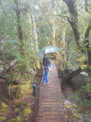 Our holidays in Tasmania, walking around on a rainy day