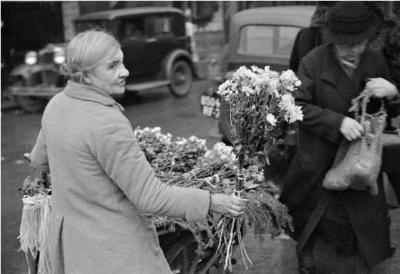 https://kvetchlandia.tumblr.com/post/162427228338/andr%C3%A9-kert%C3%A9sz-the-flower-seller-paris