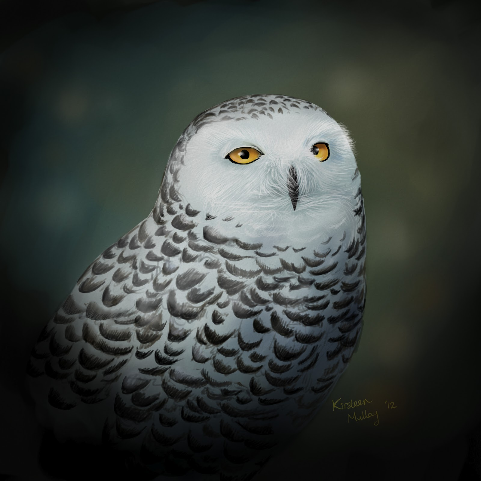 Clickitysnips: Snowy Owl Painting