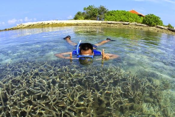 Snorkeling Di Pulau Biawak