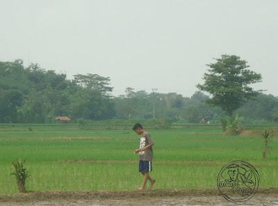 Berjalanlah dengan santai sambil melihat ke pinggir pematang sawah
