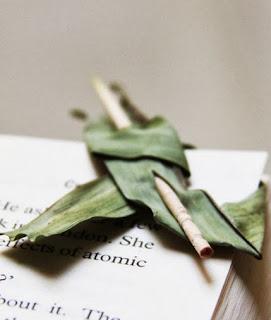 http://translate.googleusercontent.com/translate_c?depth=1&hl=es&rurl=translate.google.es&sl=en&tl=es&u=http://onelmon.com/blog/2012/10/leaf-bookmark/&usg=ALkJrhhUgpzvN5_L_PX8sCrPfKbfTQjpMw