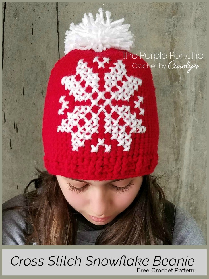 89fd4d62416 Snowflake Crochet Beanie This free crochet hat pattern is a basic crochet  hat with the snowflake pattern cross stitched onto the hat.