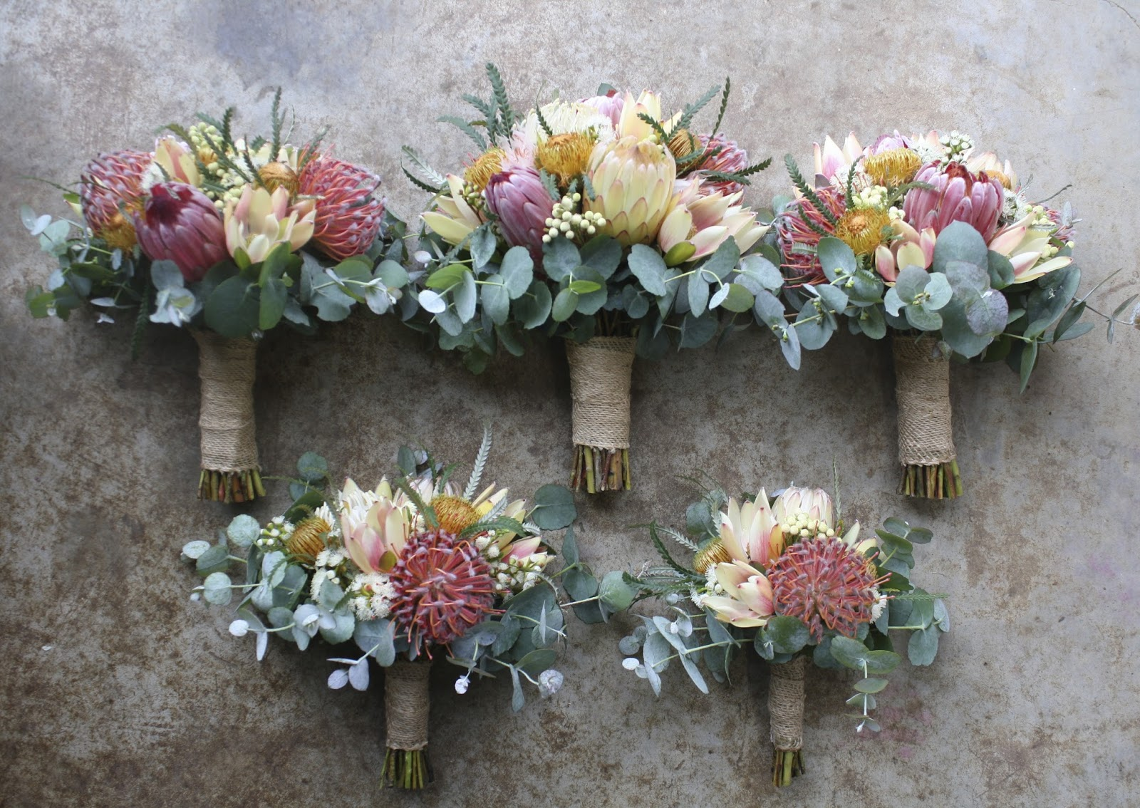 November wedding flowers in season best fall wedding ideas on my protea white ice were just beginning to flower well for the first season and they mightylinksfo