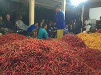 Asosiasi Petani Hortikultura  Sleman  Gelar Pasar  Lelang Cabe