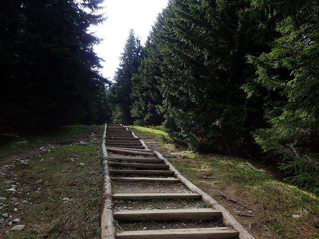 Schody Rusinowa - Gęsia
