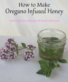 Make Oregano Infused Honey